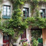 Orti urbani condivisi e giardini collettivi: a Parigi una legge per incentivarli - Tommaso Vecci architetto