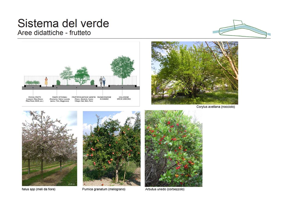 Masterplan Firenze sud – Proposta di aree didattiche con frutteto - Tommaso Vecci